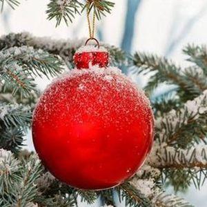 Krásné Vánoce a úspěšný nový rok